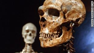 Neanderthals may have used their hands differently from humans