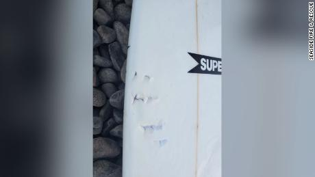 An image of the victim's surfboard which appears to show bite marks.