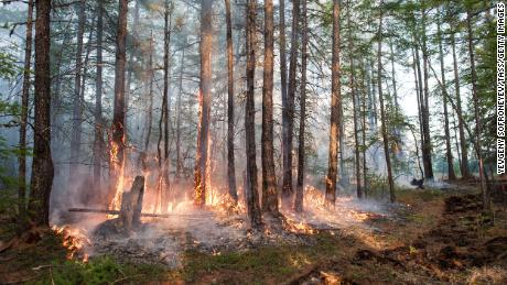 A forest fire burns in Russia's Sakha Republic. Parts of Siberia experienced temperatures in 2020 that were more than 6 degrees Celsius above normal averaged over the year.