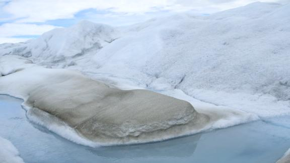 Algae growing on the Greenland ice sheet is causing it to melt faster.
