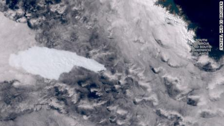 Is an iceberg weighing hundreds of billions of tons on a penguin collision course?