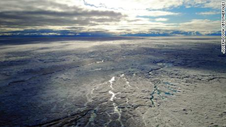 A 'frozen rainforest' of microscopic life is melting Greenland's ice sheet