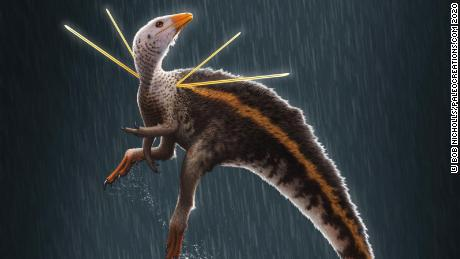 An artist's impression of Ubirajara jubatus.