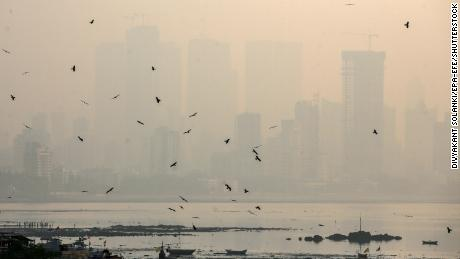 Exposure to dirty air in the world's most polluted region linked to pregnancy loss, study finds
