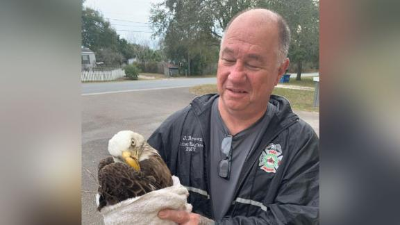 After firefighters realized the bird was in distress, they called a local wildlife sanctuary for help.