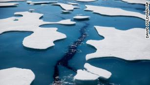 From Norway to Canada, the Arctic Ocean is being polluted by tiny plastic fibers from our clothes