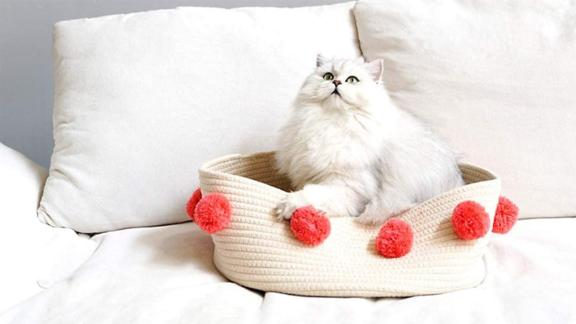 Lovely Caves Cat Bed
