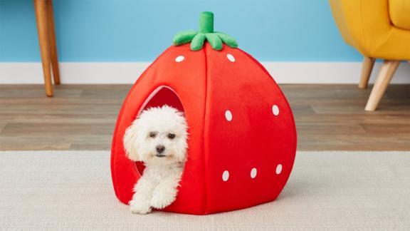 YML Strawberry Dog Bed