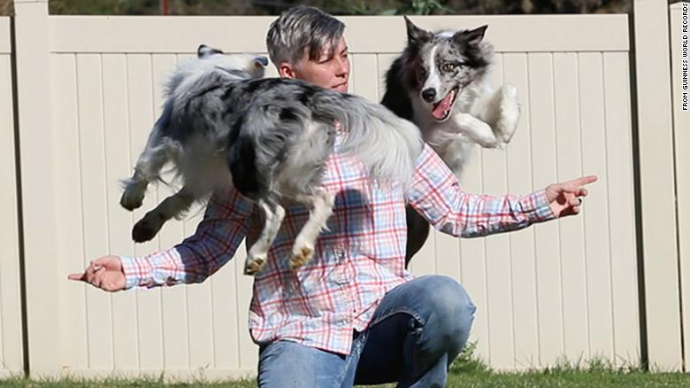 Two dogs from California just set the world record for most tricks performed in a minute