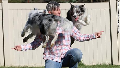 Emily Larlham and her dogs, Wish and Halo, achieved the Guinness World Records title for the most tricks performed by two dogs in one minute.