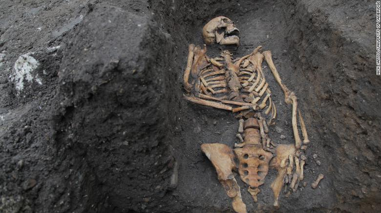 Medieval bones tell a stark tale of hard work and physical trauma