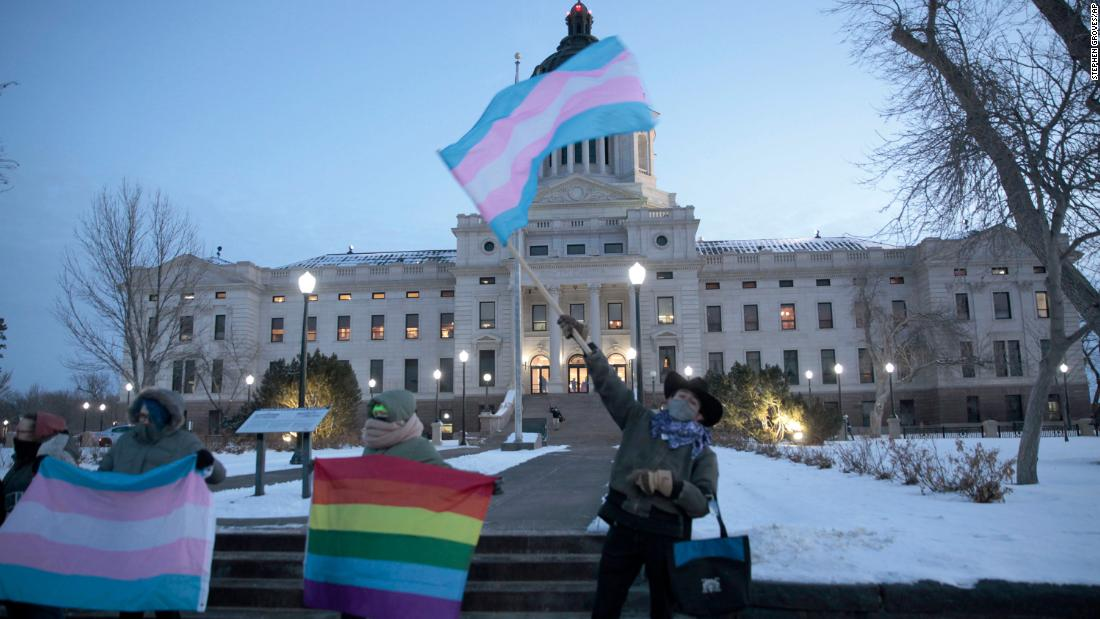 Lawmakers in 14 states have proposed anti-LGBTQ bills, many of which target trans youth