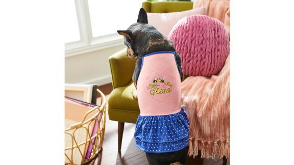 Frisco 'Bee Mine' Dog Dress