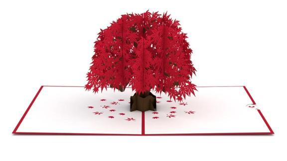 Japanese Maple 3D Card