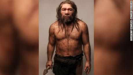 Prehistoric teeth hint at Stone Age sex with Neanderthals