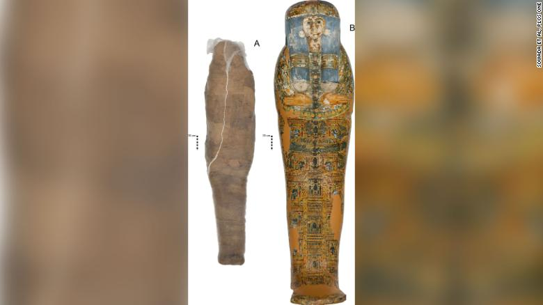 In a case of potential mistaken mummy identity, scientists uncover clues