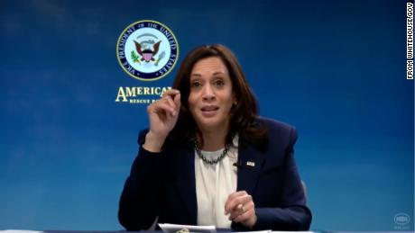 Vice President Kamala Harris speaks during a virtual roundtable discussion with Black business leaders on February 5, 2021.