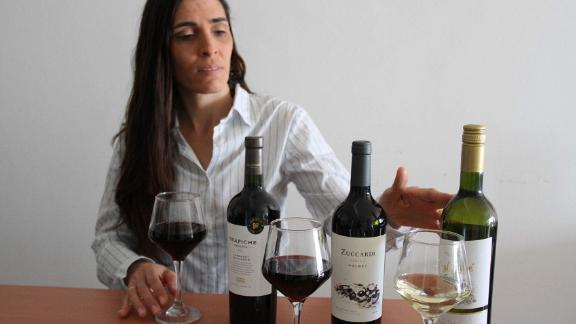 Malbecs and More: A Virtual Wine Tasting Across Argentina