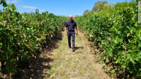 Alister Purbrick, chief executive of the Tahbilk Group, walks through his vineyard in central Victoria in February 2020.
