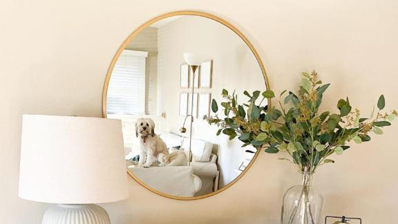 Project 62 28-Inch Round Decorative Wall Mirror