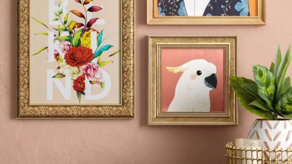 Opalhouse Cockatoo Recessed Frame