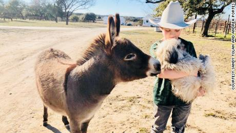 Wyatt, Rascal, and a donkey share a moment on a ranch in the Texas Hill County.