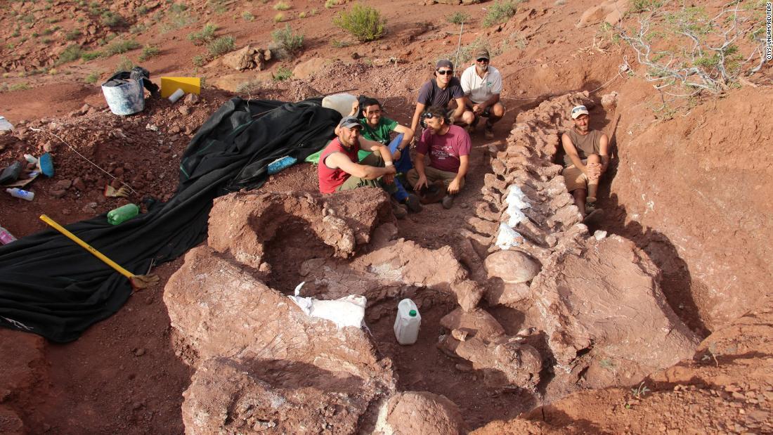 Fossils of huge Ninjatitan dinosaur that lived 140 million years ago found in Argentina - CNN