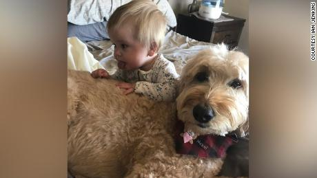 Parker, their son, with Hazel, their Goldendoodle.