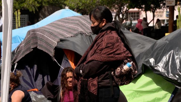 Niños migrantes en custodia de la Patrulla Fronteriza ya superan los 3.700