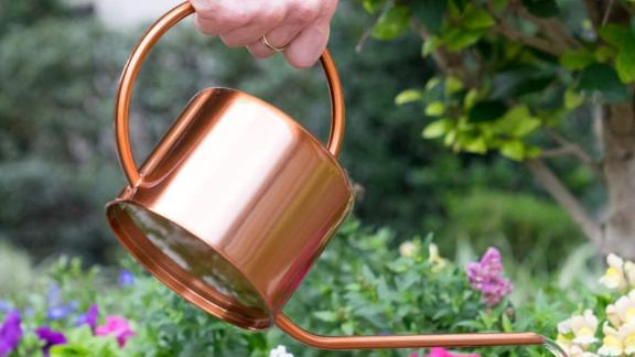 Homarden Copper-Colored Watering Can