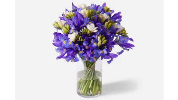Double the Purple Iris
