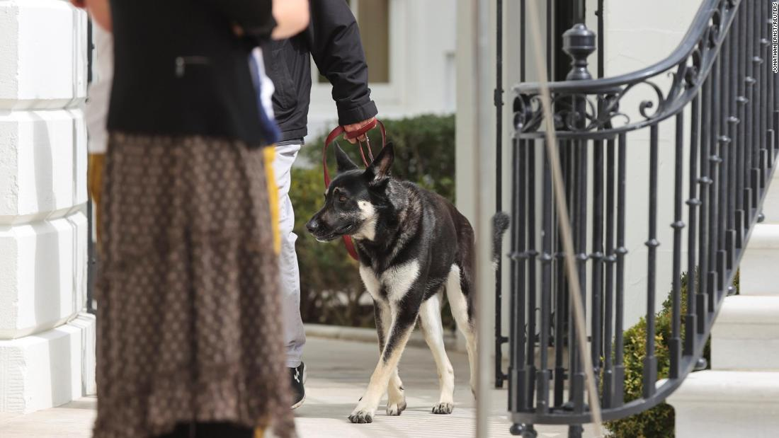 Bidens' dog Major involved in another biting incident