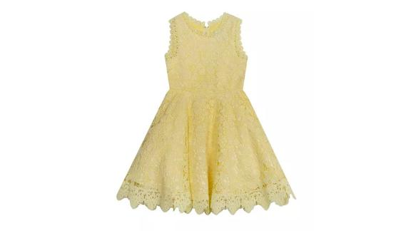 Rare Editions Big Girls Lace Skater Dress