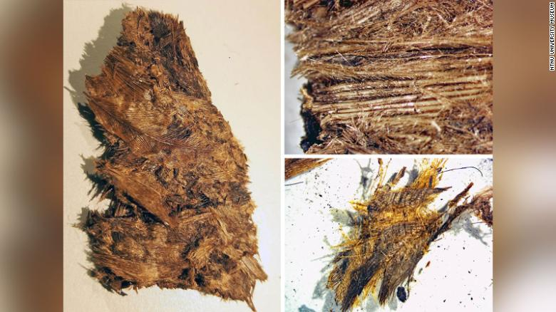 Iron Age warriors were buried with luxury feather bedding