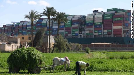 A farmer in the northeastern Egyptian city of Ismailiya harvests grass for cattle in front of the stranded container ship Ever Given, which is operated by the Taiwanese company Evergreen Marine.