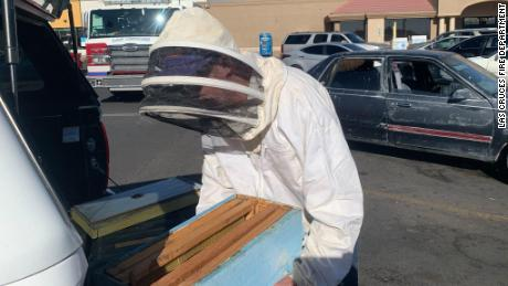 Off-duty Las Cruces firefighter Jesse Johnson used his experience as a beekeeper to safely relocate a swarm that invaded a parked car Sunday afternoon.