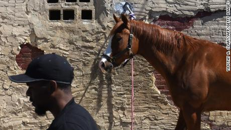 A horse is tied up at the Fletcher Street Urban Riding Club in North Philadelphia on May 16, 2017. 