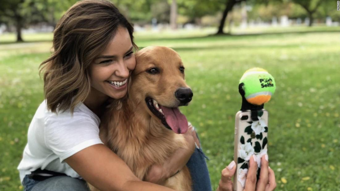 7 pet gadgets that will make life better for you and your dog