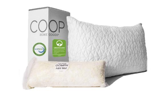 Coop Home Goods Adjustable Loft Pillow