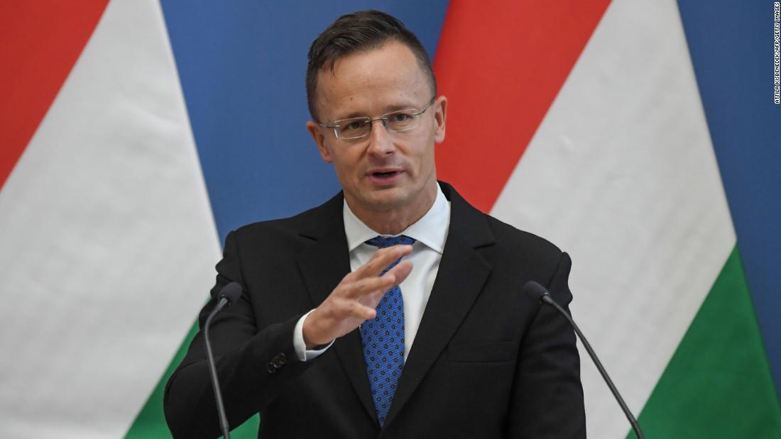 Hungarian FM questions EU's 'freedom of expression' after coach is sacked over homophobic and xenophobic comments