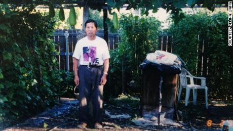 Green thumb: Selina Wang's grandfather in the family's yard, which they converted into a vegetable garden.