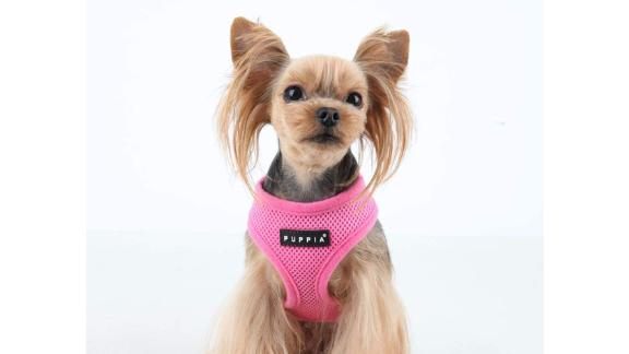 Puppia Soft Harness for Small Dogs
