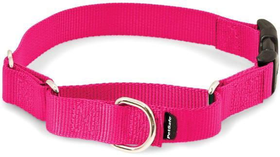 PetSafe Martingale Dog Collar