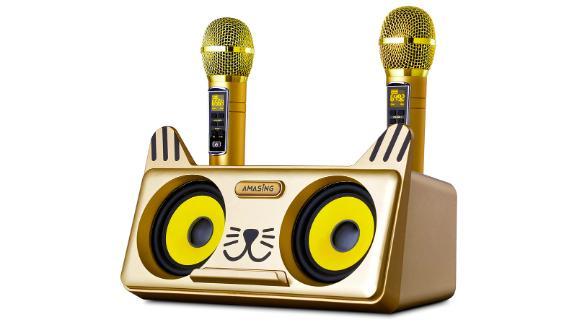 Portable Kitty Cat Karaoke Machine