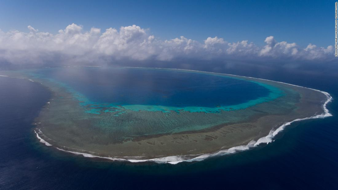 Ambitious plan aims to protect ocean area the size of South America