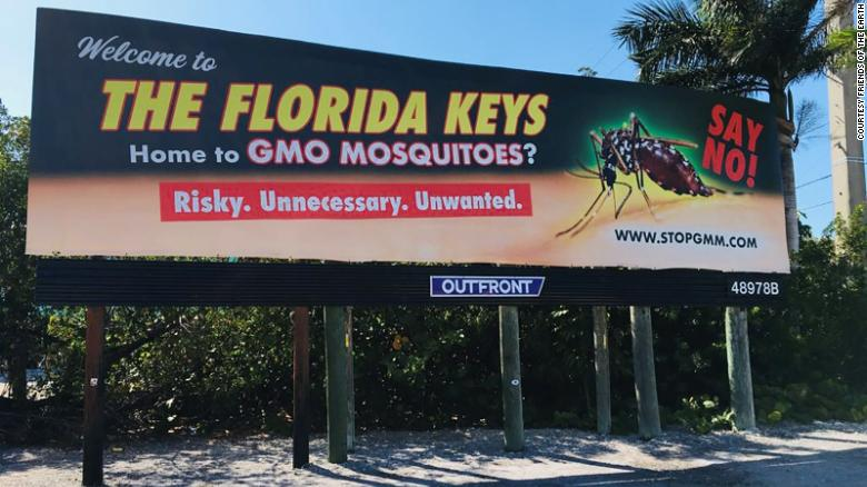 """Local residents in the Florida Keys continue to protest the release of """"mutant"""" mosquitoes."""