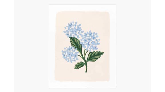 """Hydrangea Bloom Cream"" Art Print"