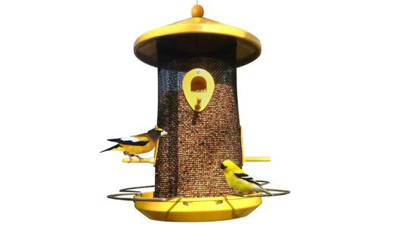 Style Selections Metal Hopper Bird Feeder