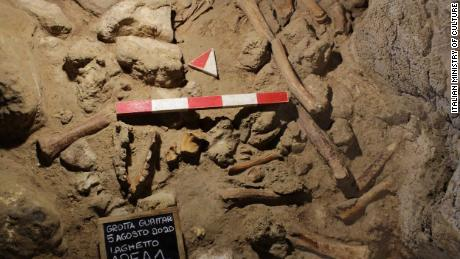 Some of the bones found in Guattari Cave near the town of San Felice Circeo in Italy.