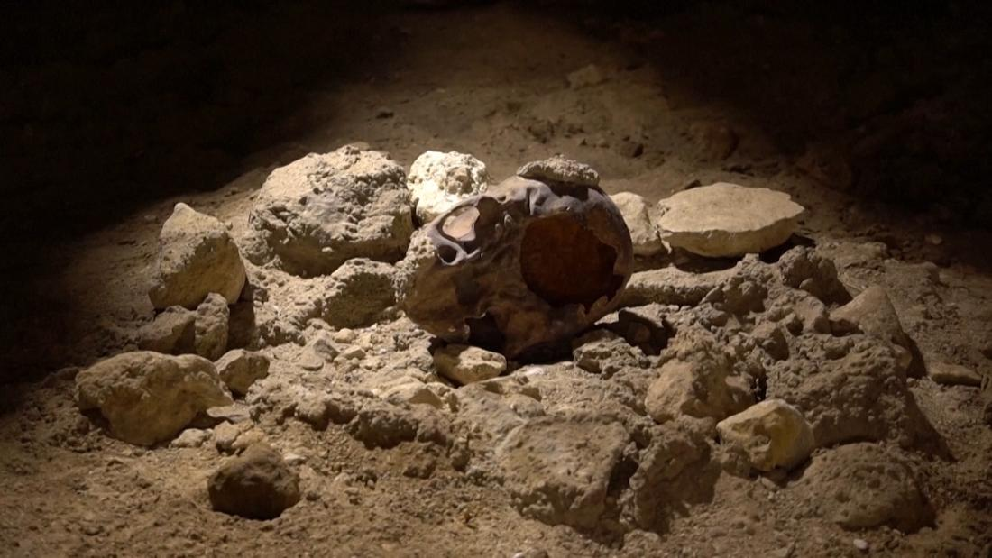 See these 50,000-year-old Neanderthal skulls discovered in Italy